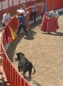 Andalusienbild2